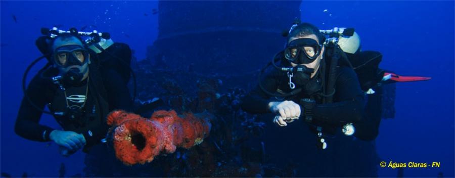 Normoxic Trimix Diver (OC, SCR, CCR)