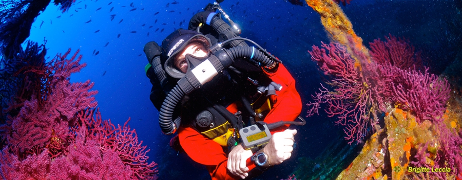 Rebreather Normoxic Trimix Diver