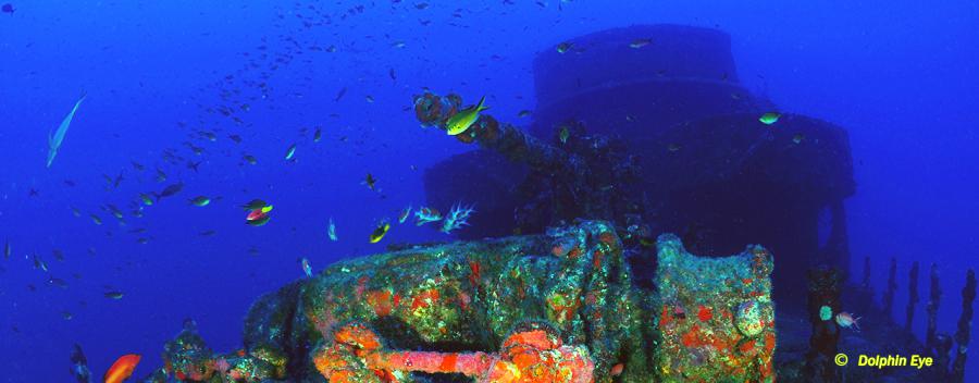 Trimix Diver (OC, SCR, CCR)