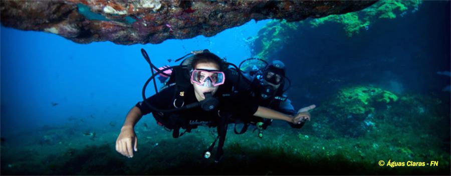 Open Water SCUBA Experience