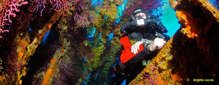 Rebreather Wreck Diver