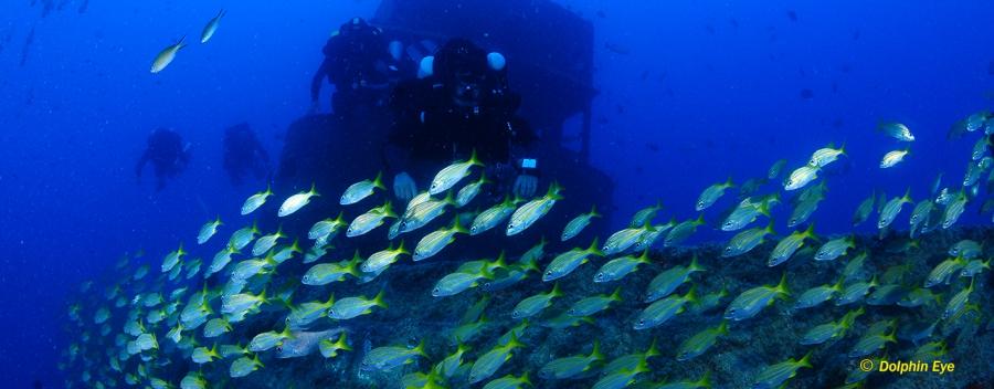 Rebreather Expedition Trimix Diver