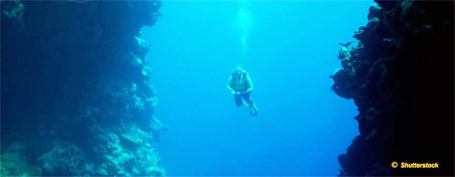 Wall Diver (OC, SCR, CCR)